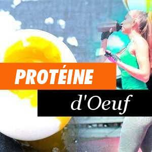 Protéines d'Oeuf Avantages et Propriétés