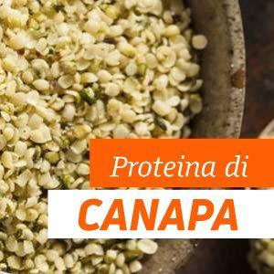 Proteine di Canapa - Benefici e Proprietà