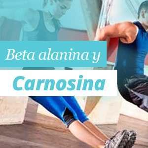 Beta-Alanina y Carnosina