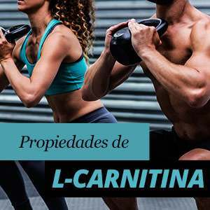 L-Carnitina Beneficios y Propiedades