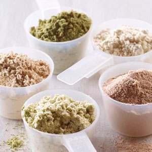Protein Shake Types